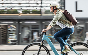Bosch eBike Sales Training Overview